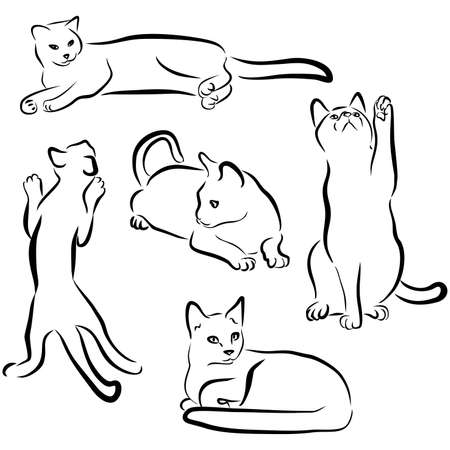 Illustration pour Felines drawn in different poses: playing, sitting, lying. Sweet home pet. - image libre de droit