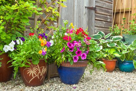 Foto de Garden shed surrounded by colorful potted plants and shrubs. - Imagen libre de derechos