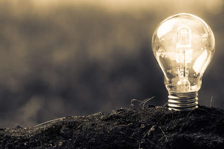 Photo for Light bulb glowing in soil as idea or energy concept - Royalty Free Image
