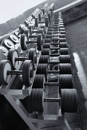 Row of dumbbells in modern sports fitness club