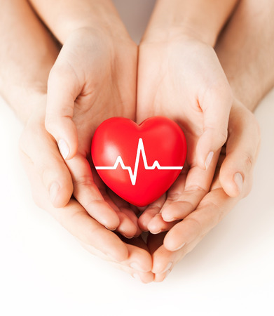 Foto de health, medicine and charity concept - closeup of couple hands holding red heart with ecg line - Imagen libre de derechos