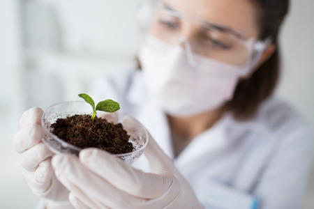 Foto de science, biology, ecology, research and people concept - close up of young female scientist wearing protective mask holding petri dish with plant and soil sample in bio laboratory - Imagen libre de derechos