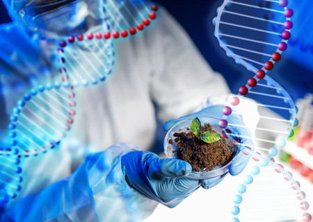 Foto de science, biology, ecology, research and people concept - close up of scientist hands holding petri dish with plant and soil sample in bio laboratory over dna molecule structure - Imagen libre de derechos
