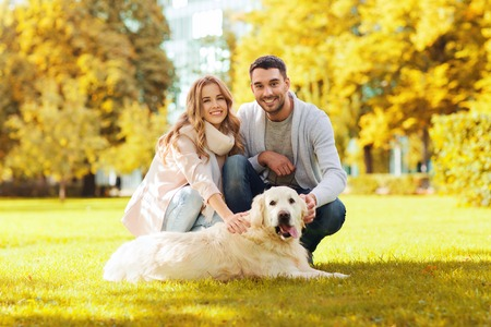 family, pet, domestic animal, season and people concept - happy couple with labrador retriever dog walking in autumn city park