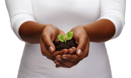 Foto de charity, environment, ecology, agriculture and nature concept - closeup of african american woman hands holding plant in soil - Imagen libre de derechos