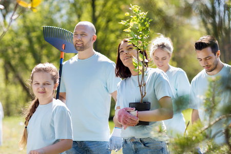 Photo pour volunteering, charity, people and ecology concept - group of happy volunteers with tree seedlings and rake walking in park - image libre de droit