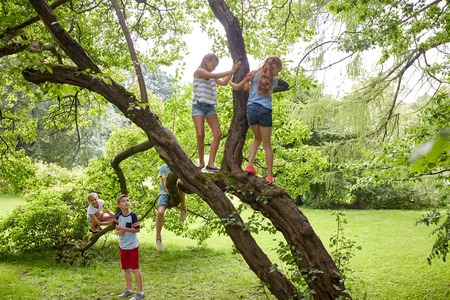 Photo pour friendship, childhood, leisure and people concept - group of happy kids or friends climbing up tree and having fun in summer park - image libre de droit