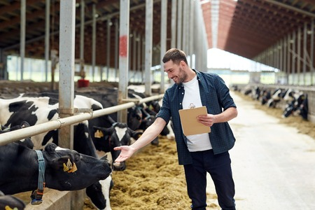 Photo pour agriculture industry, farming, people and animal husbandry concept - happy smiling young man or farmer with clipboard and cows in cowshed on dairy farm - image libre de droit