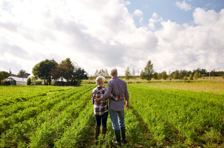 Photo pour farming, gardening, agriculture and people concept - happy senior couple at summer farm - image libre de droit