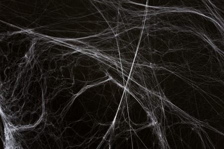 Foto de halloween decoration of spider web over black - Imagen libre de derechos