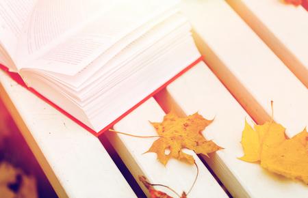 Foto de season, education and literature concept - open book and autumn leaves on park bench - Imagen libre de derechos