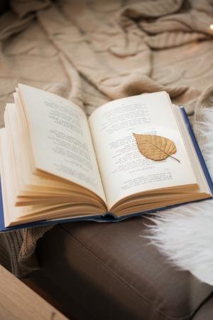 Foto de book with autumn leaf on page on sofa at home - Imagen libre de derechos