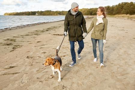 happy couple with beagle dog on autumn beach