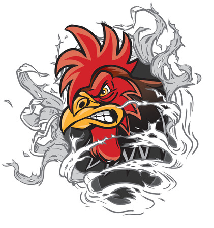 Illustrazione per Vector cartoon clip art illustration of a rooster or gamecock or chanticleer mascot head ripping through the background. Rooster head is on a separate layer for easy editing. - Immagini Royalty Free