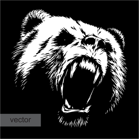 Illustrazione per engrave isolated bear vector illustration sketch. linear art - Immagini Royalty Free