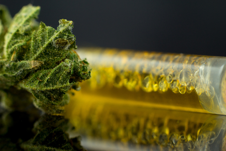 Foto de Medical Oil Cannabis - marijuana flower and oil cannabis on the mirror black background. - Imagen libre de derechos