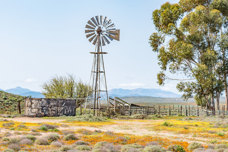 Photo for A water pumping windmill, dam and a kraal on a farm next to the road from Spoegrivier to Klipfontein in the Northern Cape Namaqualand region of South Africa - Royalty Free Image