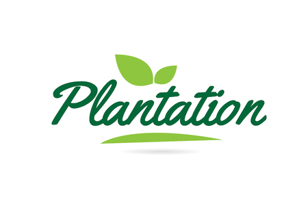 Illustration for Plantation hand written word text for typography design in green color with leaf  Can be used for a logo or icon - Royalty Free Image
