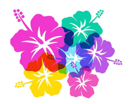 Ilustración de Hibiscus southern country image - Imagen libre de derechos