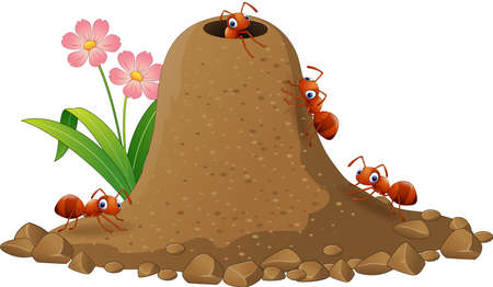 Illustration pour Vector illustration of Cartoon ants colony and ant hill - image libre de droit