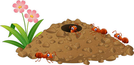 Illustration pour Vector illustration of Cartoon ants colony and ant hill - image libre de droit