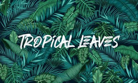 Illustration pour Tropical leaves forest background - image libre de droit