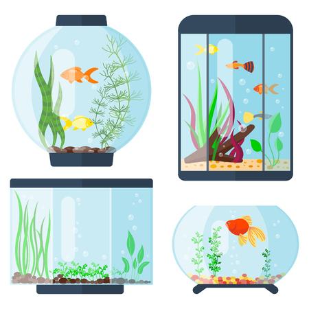Illustration pour Transparent aquarium vector illustration habitat water tank house underwater fish tank bowl. - image libre de droit