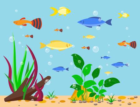 Illustration pour Transparent aquarium sea aquatic background vector illustration habitat water tank house underwater fish algae plants. - image libre de droit