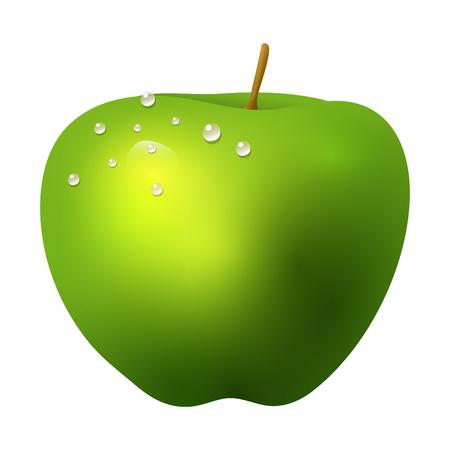 Ilustración de Green apple fruit realistic 3d healthy vegetarian sweet ripe vector illustration. Juicy nature piece agriculture gourmet ingredient tasty vegan food. - Imagen libre de derechos