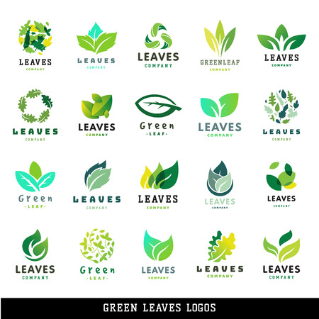 Illustration for Green leaf eco design element icon friendly nature elegance symbol and decoration floranatural element ecology organic vector illustration. Abstract bio foliage decorative flora. - Royalty Free Image