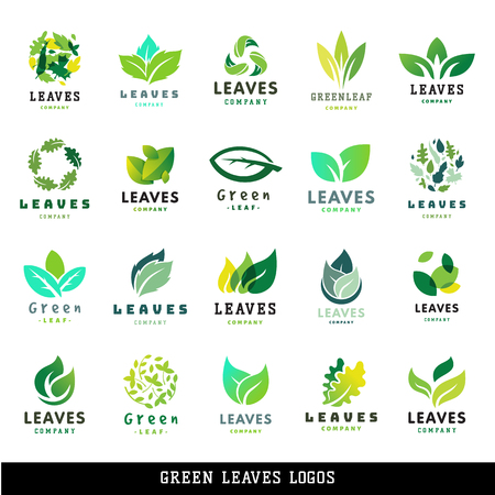 Illustration for Green leaf eco design friendly nature elegance label natural element ecology organic vector illustration. - Royalty Free Image