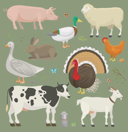 Illustration pour Different home farm vector animals and birds like cow, sheep, pig, duck farmland set illustration - image libre de droit
