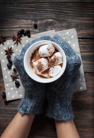 Photo for Hands in knitted mittens holding hot chocolate in grey heart cup with marshmallow and cinnamon, closeup - Royalty Free Image