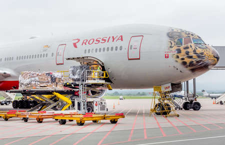 Foto de Russia, Vladivostok, 08/10/2018. Passenger airplane Boeing 777-300 of Rossiya Airlines just landed, cargo is unloaded from the aircraft. Fuselage is painted as a face of Far Eastern leopard. - Imagen libre de derechos