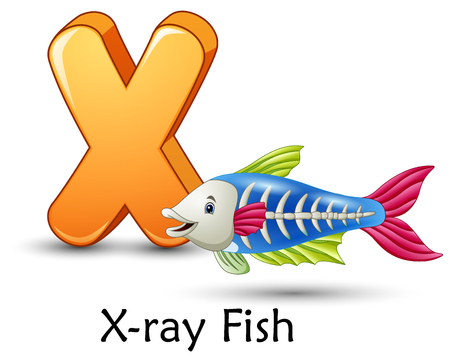Illustration for Vector illustration of Letter X is for X-ray fish cartoon alphabet - Royalty Free Image