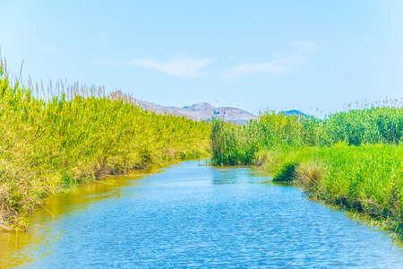 Photo pour Marshes of Albufera national park at Mallorca, Spain - image libre de droit