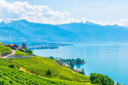 Photo for Lavaux wine region near Lausanne, Switzerland - Royalty Free Image