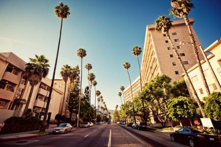 Photo pour Palm streets of Beverly Hills - image libre de droit