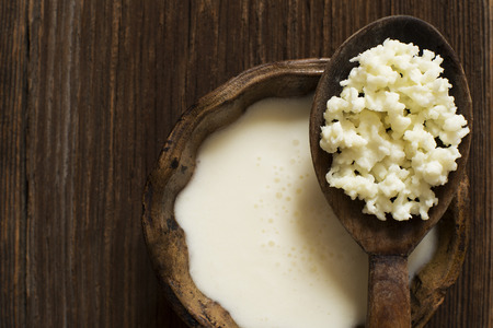 Photo for Milk kefir grains on a wooden spoon overhead shoot - Royalty Free Image