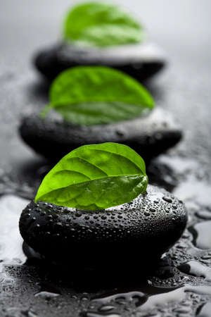 Photo for zen stones and leaves with water drops - Royalty Free Image