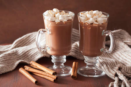Photo for hot chocolate with mini marshmallows cinnamon winter drink - Royalty Free Image