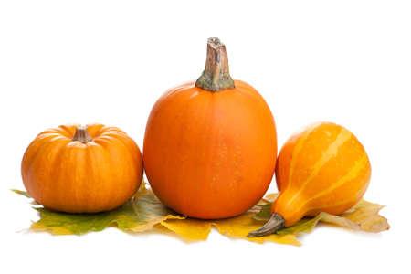 Foto de decorative pumpkins and autumn leaves isolated - Imagen libre de derechos