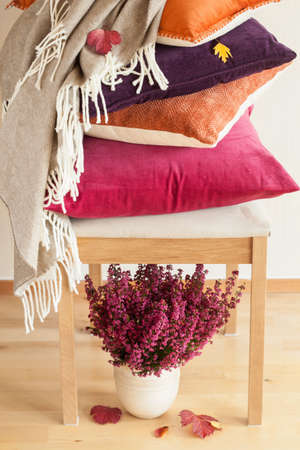 Foto de colorful cushions throw cozy home autumn mood flower leaf - Imagen libre de derechos
