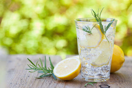 Photo pour refreshing lemonade drink with rosemary in glasses - image libre de droit
