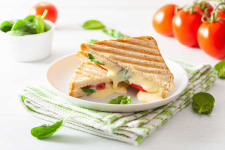Photo for grilled cheese and tomato sandwich on white background - Royalty Free Image