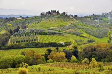 Typical Tuscany landscape in spring, Italy