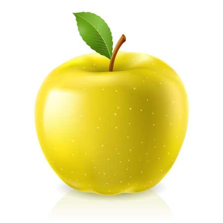Ilustración de Yellow apple. Illustration on white background   - Imagen libre de derechos