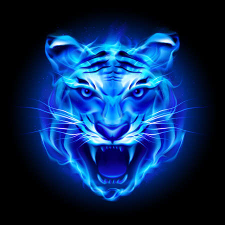 Illustration for Head of fire tiger in blue. Illustration on black  background. - Royalty Free Image