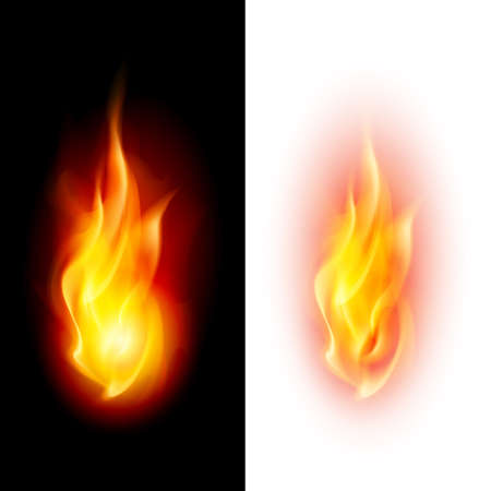 Illustration for Two fire flames on contrast black and white backgrounds. - Royalty Free Image