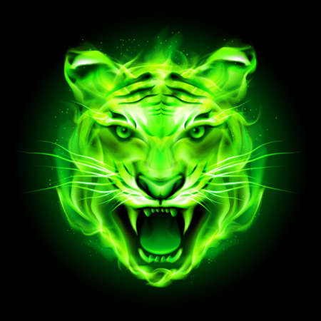 Illustration for Head of agressive green fire tiger isolated on black background. - Royalty Free Image